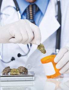 Natural Solutions To Pain: Physical Therapy  And Cannabis Work Hand In Hand