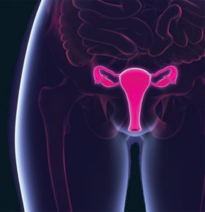 Cervical Cancer Awareness:  What You Need to Know