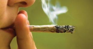 The Benefits of Smokable Cannabis