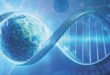 PEMF THERAPY to Unlock Complex Conditions