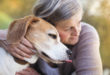 Working Though Grief and the Loss of a Pet