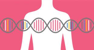 Hereditary Breast & Ovarian Cancer (HBOC)