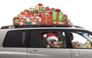 5 Holiday Travel Tips from  Rivers Family Medicine