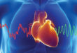 HEART RATE VARIABILITY IS THE KEY  MEASUREMENT FOR OPTIMAL HEALTH