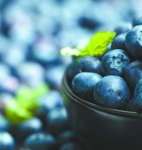 Blueberries Do a Body Good