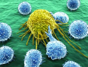 Immunotherapy Is Turning  The Tide Against Some Cancers