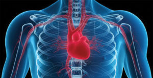Heart Failure: What You Should Know