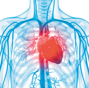 Minutes Count: Recognizing the Signs & Symptoms of a Stroke Saves Lives!
