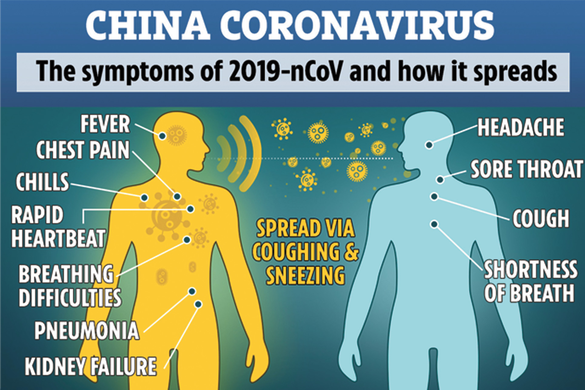 Worried About The Coronavirus