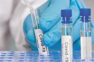 COVID-19 Neutralizing Antibody